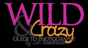 wildandcrazylogo3