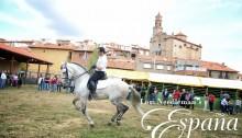 lorineedleman.com.Spain.Orihuela2014.005
